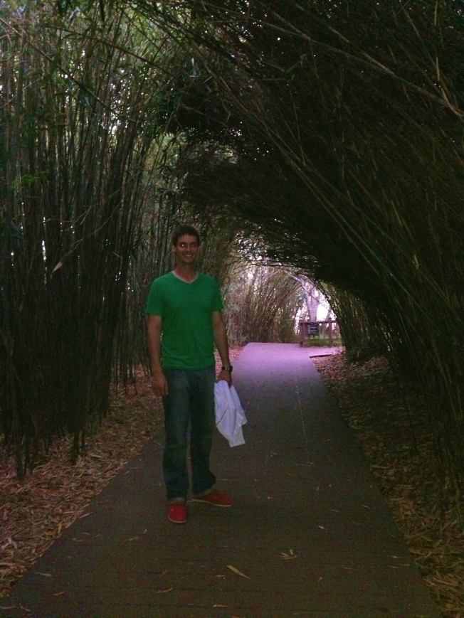 Bamboo forest (Odongdo)
