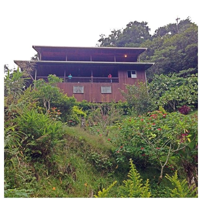 Eco friendly and 20 min walk from Mt. Kinabalu's headquarters- Mt. Kinabalu Lodge!