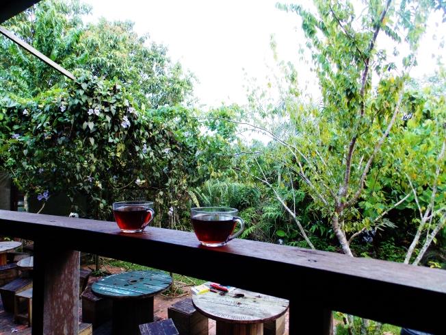Enjoying our morning tea.