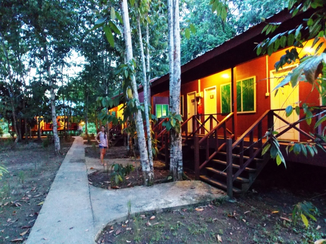 Sukau Greenview B&B- our last night in the rainforest!